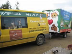 """передвижная выставка-раздача животных """"Веселый шарабанчик"""""""
